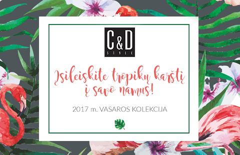 Atraskite naują C&D STYLE vasaros kolekciją!